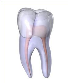 dente-aberto-canal-01