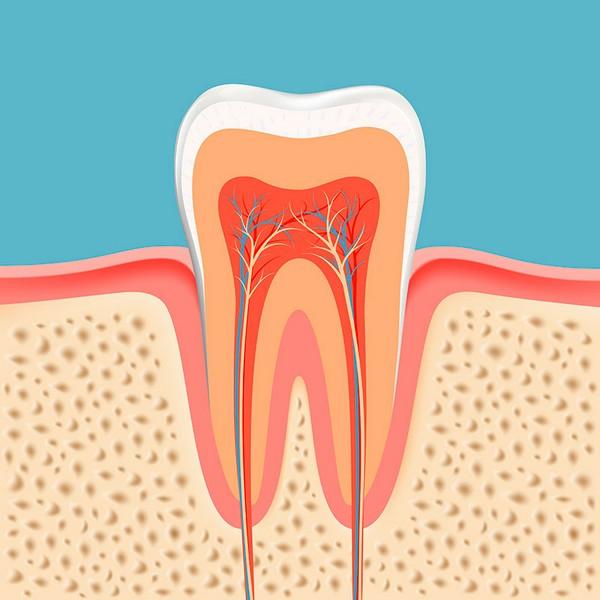tratamento-canal-dente-02
